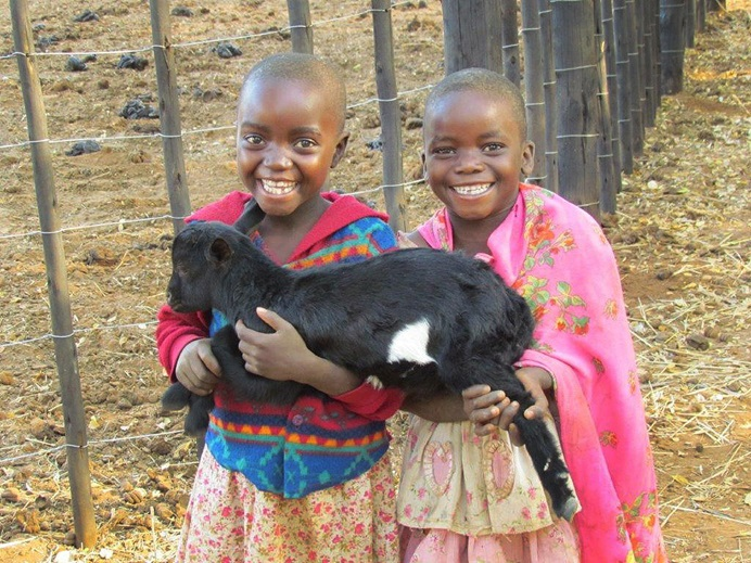 Orphan children receive a goat as part of a project in Mahenye, Zimbabwe. The recipients must return the first female progeny from their goat to the project, which is then given to a new orphan. The program is one of many self-help projects for disadvantaged communities in Zimbabwe funded by three Florida United Methodist churches. Photo by Chenayi Kumuterera, UMNS.