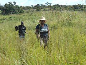 Zimbabwe missionary, Lorraine Charinda, and Yelesani Shachobe, an irrigation technician, look for a new site to install an irrigation system at Kamisamba Farm in North Katanga, Congo. Photo courtesy of Lorraine Charinda.