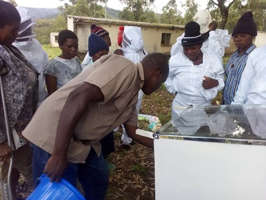 A local agriculture extension officer teaches members of the Odzani Swarm Charm how to separate honey   and wax using a honey separator. As part of the United Methodist Women project, the women manage   beehives and sell the honey and its by-products to provide for their families and local church. Photo   by Kudzai Chingwe, UMNS.