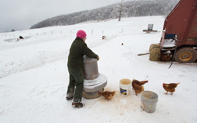 Andy, a recovering addict, feeds chickens at Brookside Farm, part of the Jacob's Ladder rehabilitation program in Aurora, W.Va. Photo by Mike DuBose, UMNS.