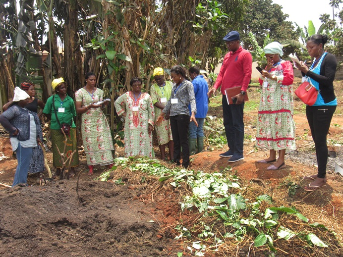 Members of the United Methodist Women Association in Cameroon learn about organic farming during a hands-on session at the group's annual conference March 11-13 in Yaoundé, Cameroon. Photo by Ebeneza Mosima.